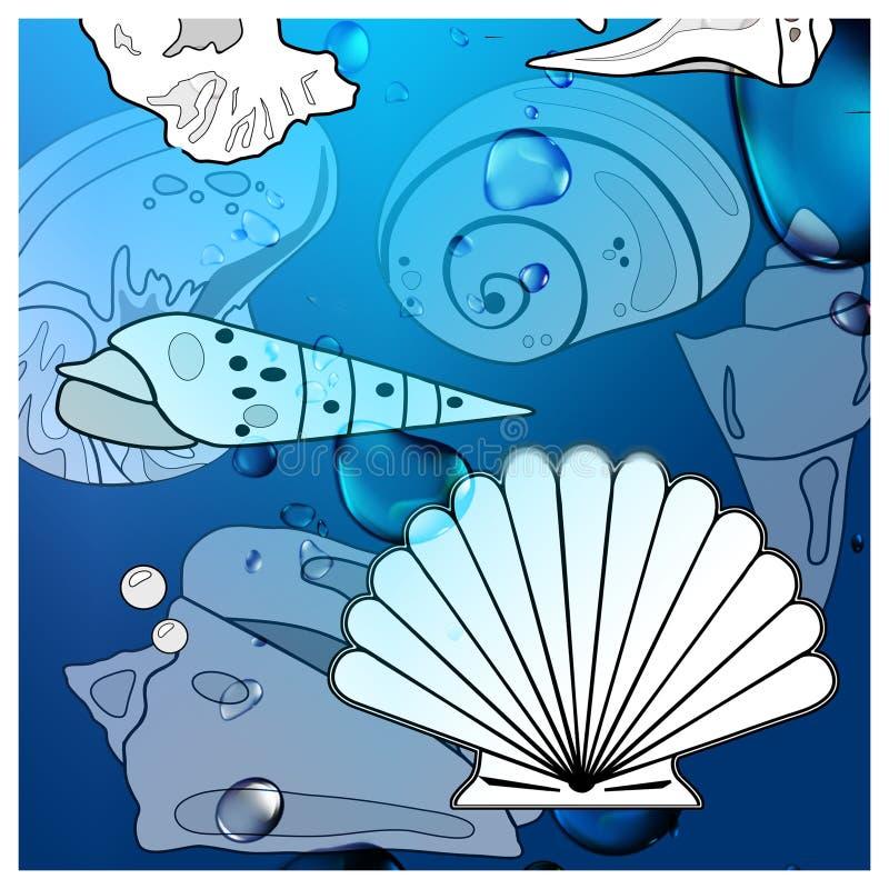 Conchas do mar molhadas do oceano gráfico ilustração stock