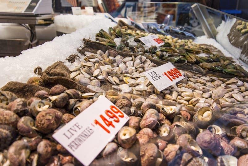 Conchas do mar no mercado foto de stock