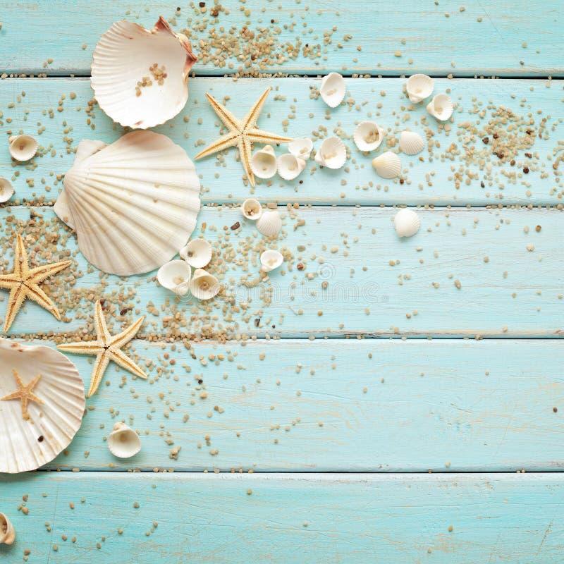 Download Conchas marinas imagen de archivo. Imagen de tarjeta - 41907483