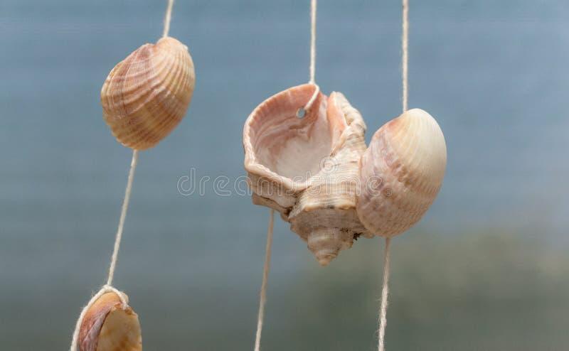 Conchas marinas blancas en el hilo en el viento contra el cielo azul Concepto marino del arte Descasca el fondo Concepto de las v foto de archivo libre de regalías