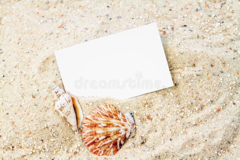 Download Conchas Marinas Con La Tarjeta En Blanco Foto de archivo - Imagen de ocio, copia: 41904566