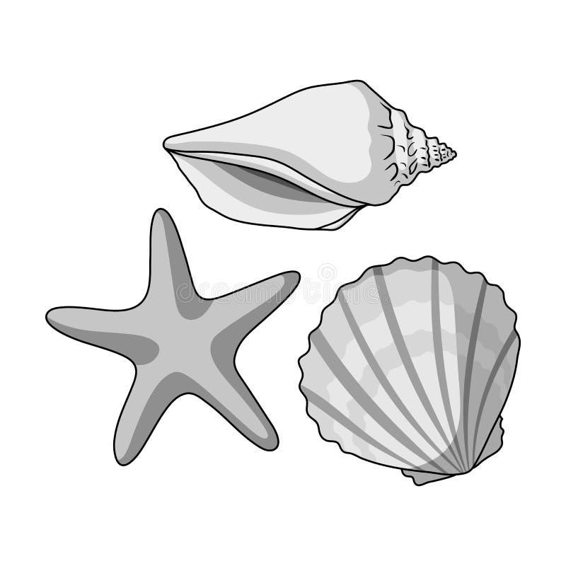 Conchas marinas de la parte inferior del mar El resto del verano escoge el icono en el ejemplo monocromático de la acción del sím libre illustration