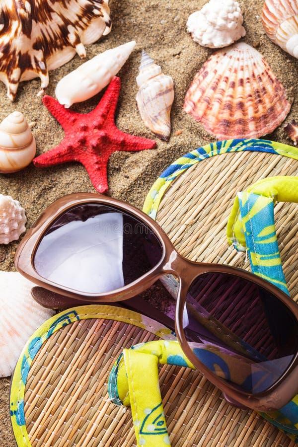 Download Conchas Marinas En La Arena Imagen de archivo - Imagen de relaje, playa: 41920739