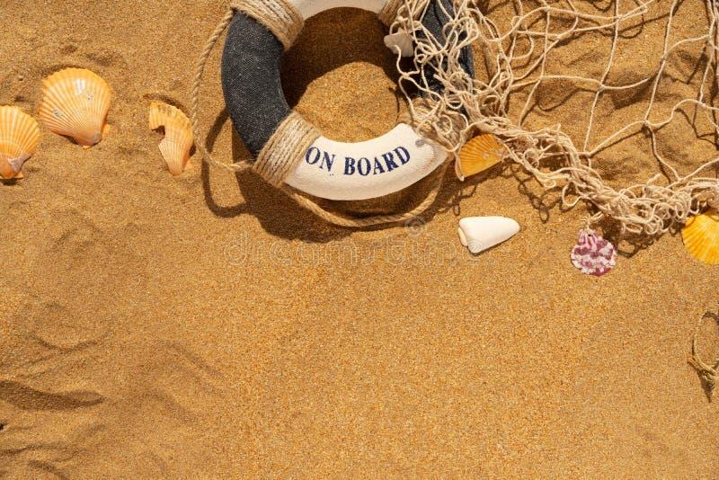 Conchas marinas en la playa del verano imagen de archivo