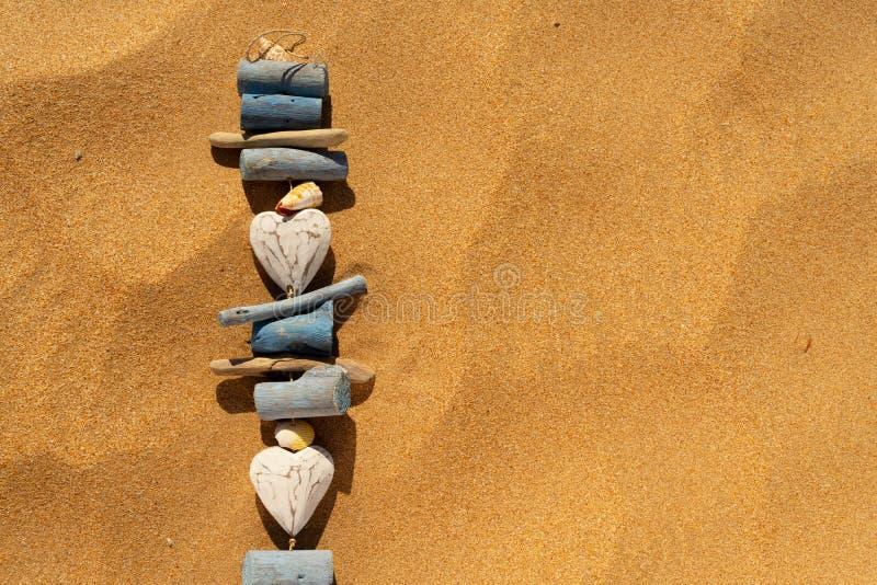 Conchas marinas en la playa del verano foto de archivo