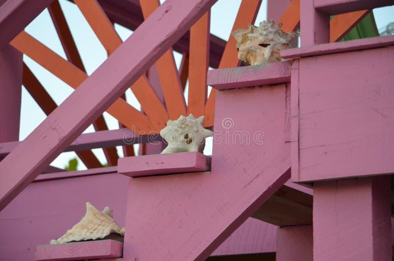 Conchas marinas en las escaleras imágenes de archivo libres de regalías