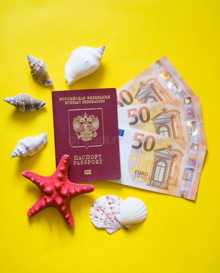 Conchas marinas euro del pasaporte en fondo amarillo como en la playa foto de archivo