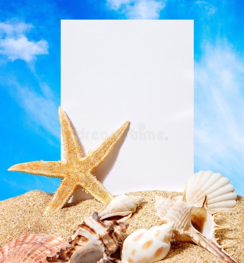 Conchas marinas y estrellas de mar con la tarjeta en blanco en la arena imagenes de archivo