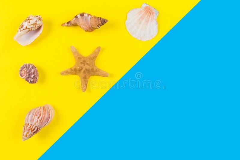 Conchas marinas y estrellas de mar en fondo azul y amarillo Vacaciones, viaje, concepto del verano imagen de archivo libre de regalías