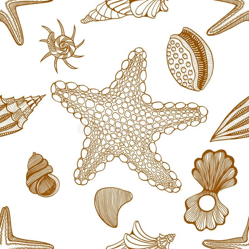 Conchas marinas y modelo inconsútil de las estrellas de mar libre illustration