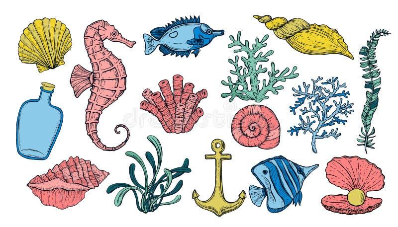 Conchiglia, alga, ancora, ippocampo e pesce Creature variopinte subacquee disegnate a mano illustrazione di stock