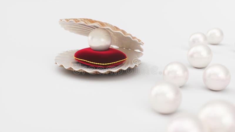 Conchiglia con la perla su un cuscino rosso molle del velluto con un colpo dell'oro Bella perla, gioielli costosi per le donne illustrazione di stock