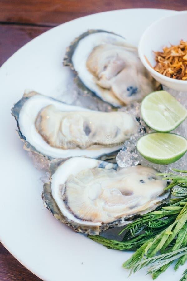 Conchiglia di ostrica con salsa piccante fotografie stock