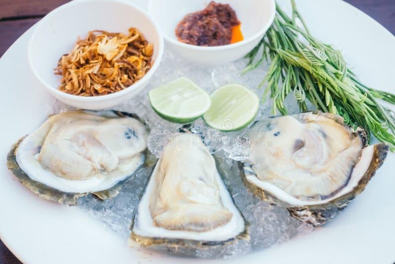 Conchiglia di ostrica con salsa piccante immagine stock