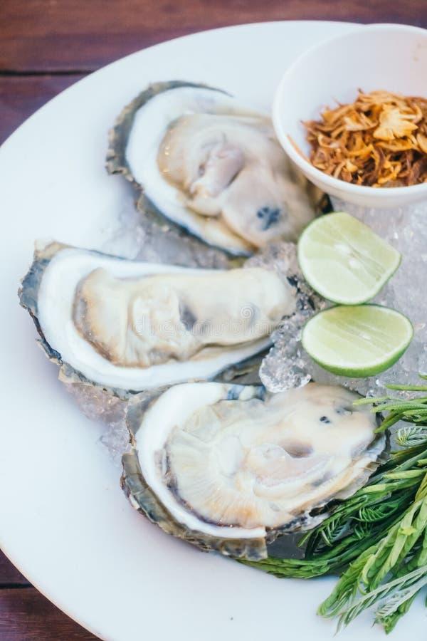Conchiglia di ostrica con salsa piccante fotografia stock