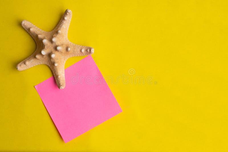 Conchiglia esotica con il bastone rosa della nota su un fondo giallo Vacanza di estate fotografia stock libera da diritti