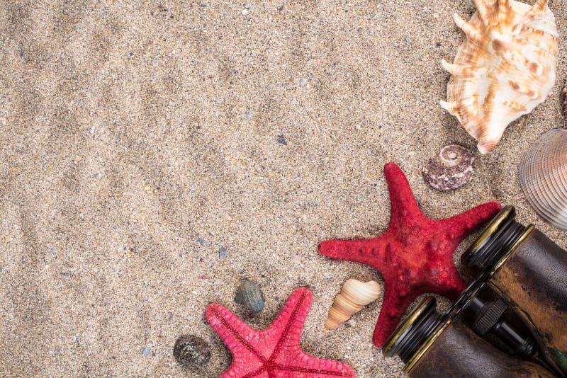 Conchiglie con due stelle marine rosse e binoculare fotografie stock libere da diritti