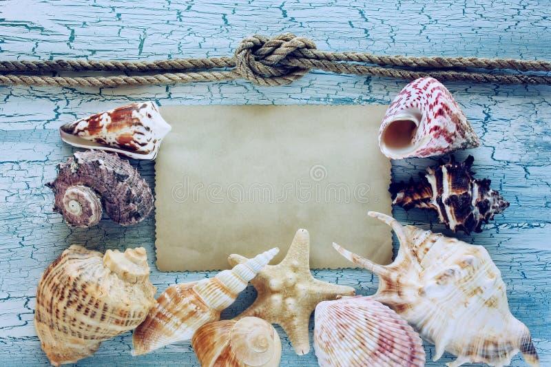 Conchiglie, corda e carta in bianco fotografie stock