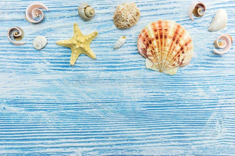 Conchiglie e stelle marine sui bordi di legno blu Vacanze estive co fotografia stock