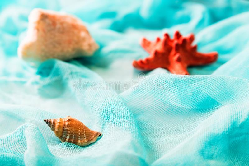 Conchiglie e stelle marine sul fondo cian del panno fotografie stock