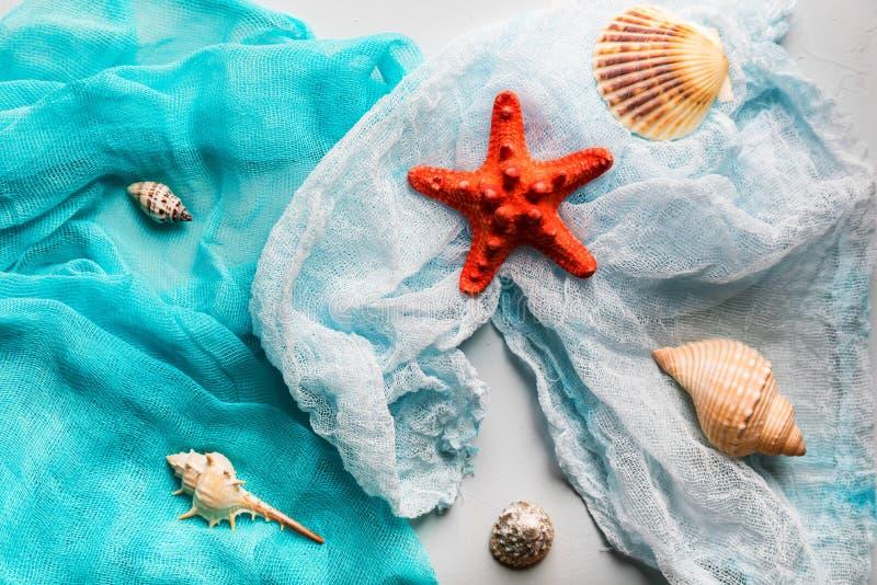 Conchiglie e stelle marine sul panno cian e bianco fotografia stock