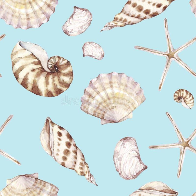 Conchiglie, modello senza cuciture, fondo marino Progettazione tropicale della spiaggia dell'acquerello Struttura della stampa de royalty illustrazione gratis