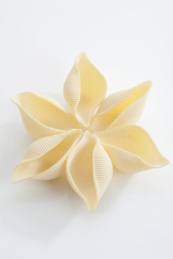 Free Conchiglie Pasta Arranged In Flower Shape Royalty Free Stock Photo - 50488405