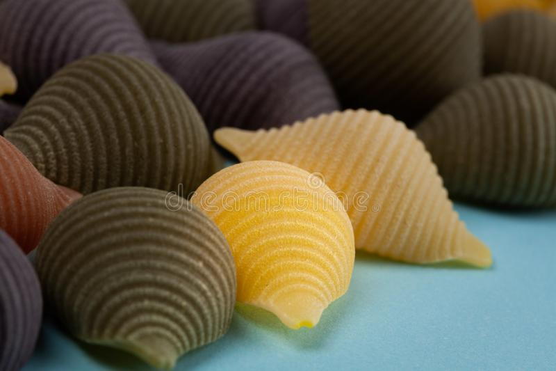 Conchiglie Rigate pasta shell in an arrangement. stock photo