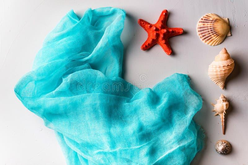 Conchiglie, stelle marine e panno cian su bianco fotografia stock libera da diritti