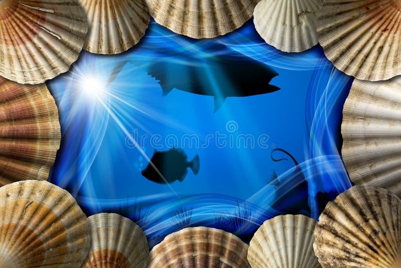 Conchiglie sul fondo di abisso del mare illustrazione di stock