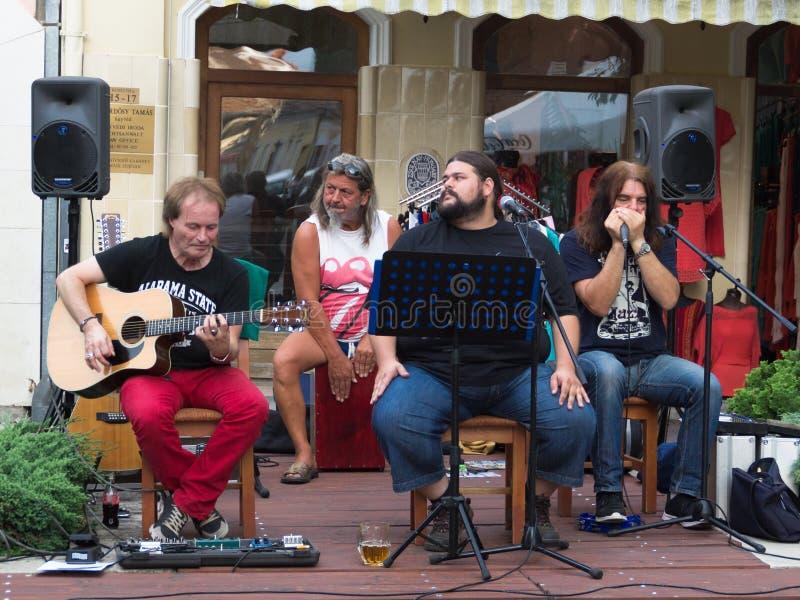 Concierto de la banda de azules lamentable en festival de la calle de Keszthely imagenes de archivo