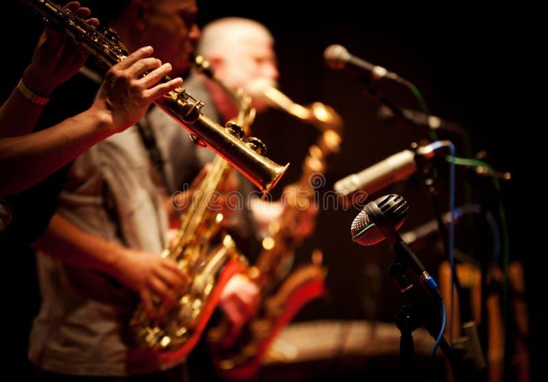 Concierto del jazz imagen de archivo libre de regalías
