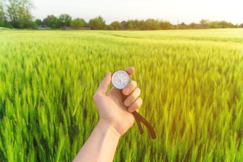 Conclusion d'une direction en nature sur un champ de blé Une main du ` s d'homme tient une boussole image stock