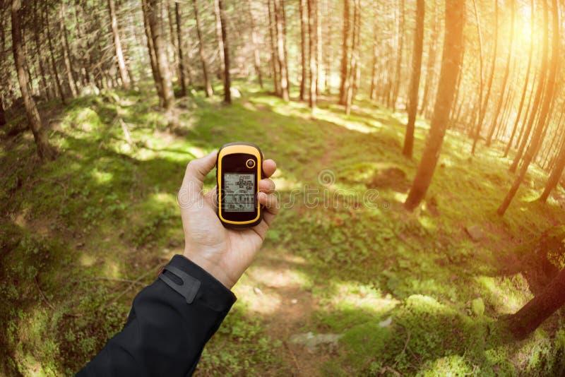 Conclusion de la bonne position dans la forêt par l'intermédiaire des généralistes photographie stock