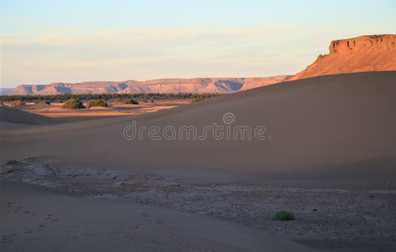 Conclusione del pomeriggio nella valle di Draa, Marocco immagini stock