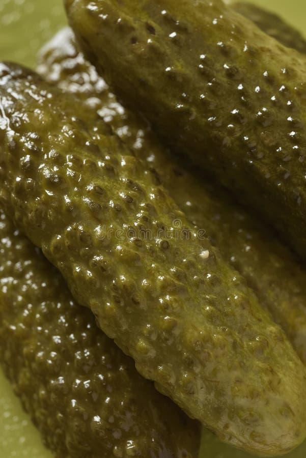 Concombre détaillé de conserves au vinaigre photo stock