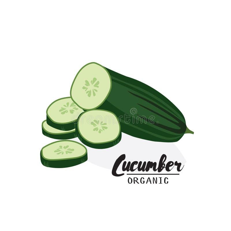Concombre de bande dessinée Légume vert mûr Végétarien délicieux Aliment biologique d'Eco Conception plate de vecteur, d'isolemen illustration de vecteur