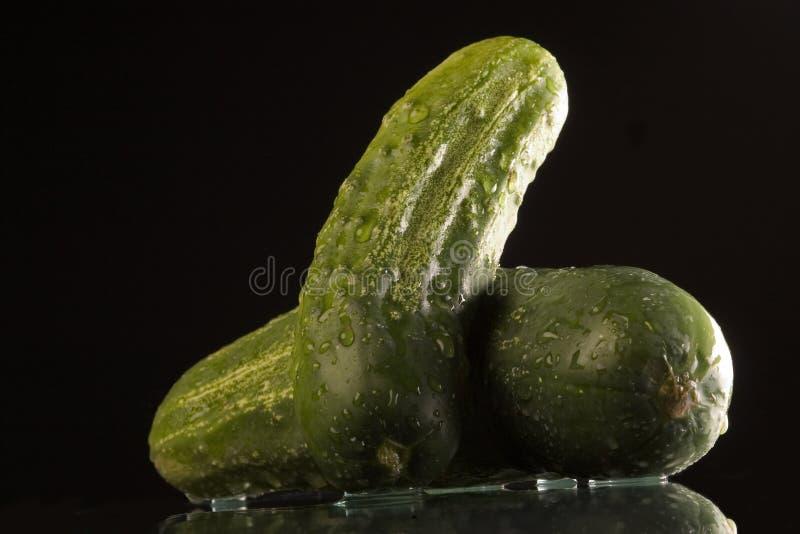 Concombre Humide Image libre de droits