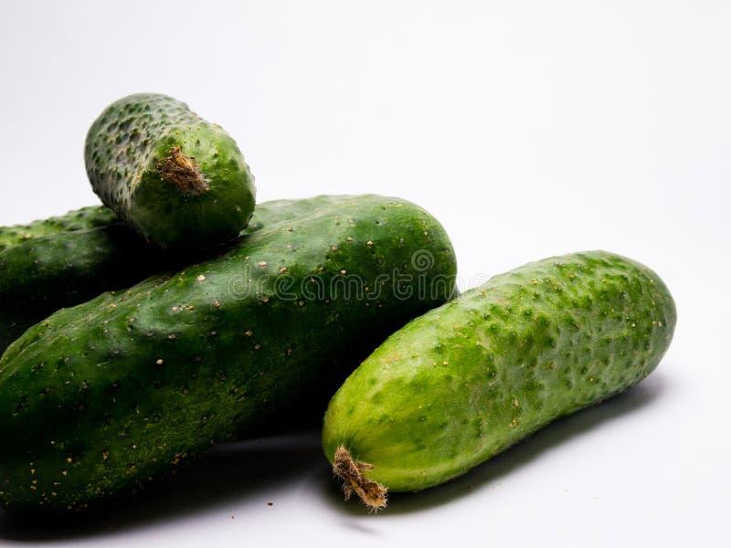Concombre vert frais sur le fond blanc images stock