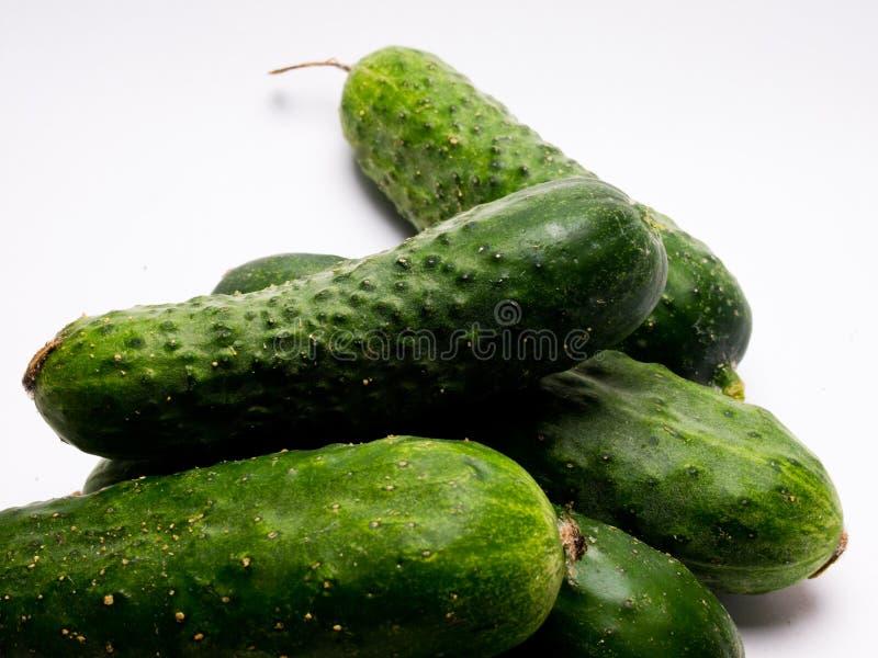 Concombre vert frais sur le fond blanc photo stock