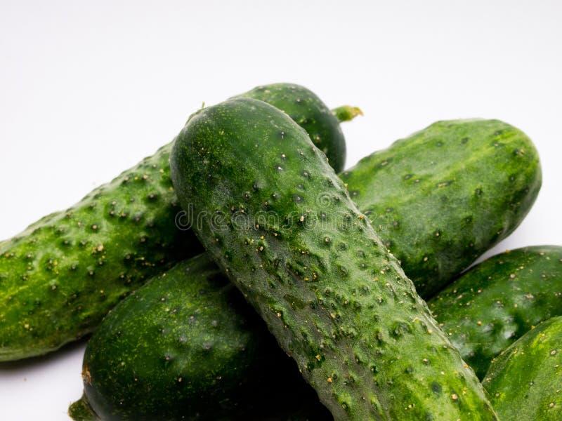 Concombre vert frais sur le fond blanc photographie stock libre de droits