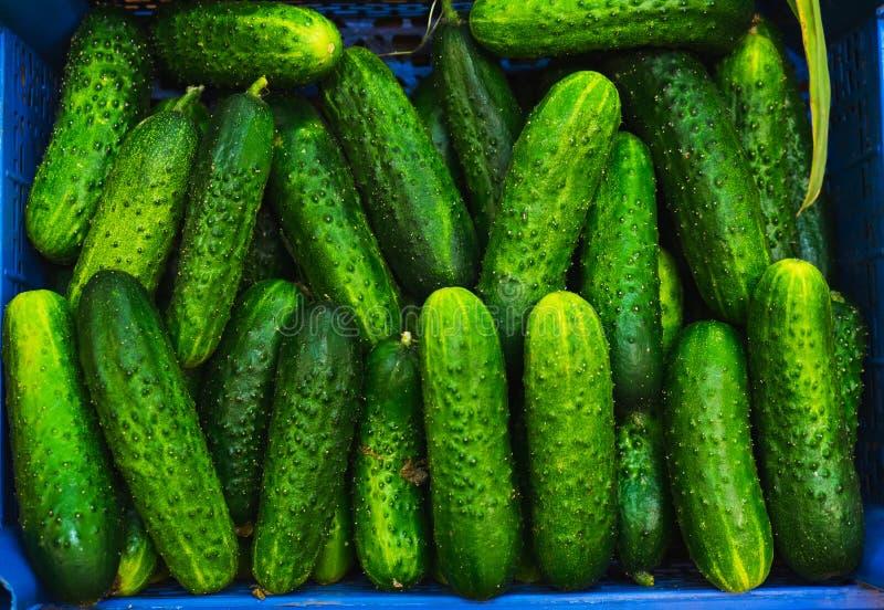 Concombres frais verts dans un panier dans la fenêtre d'un petit marché végétal photos stock