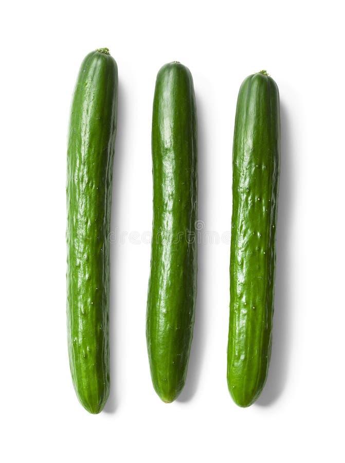Concombres verts photo libre de droits