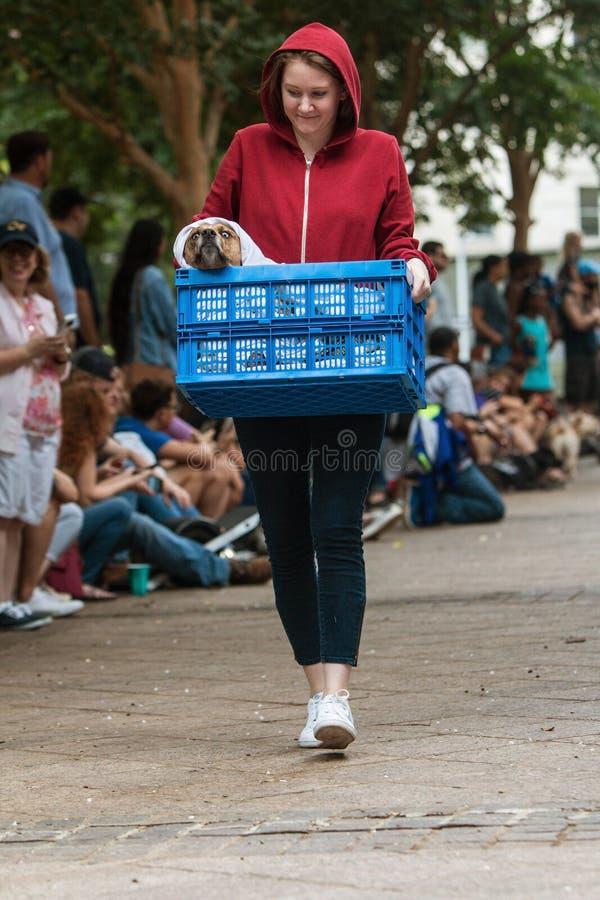 Concorrentes vestidos como E T Os caráteres do filme participam no engodo canino foto de stock