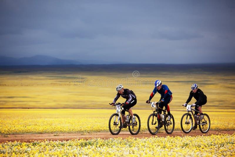 Concorrenza della bici di montagna di avventura della sorgente fotografia stock libera da diritti