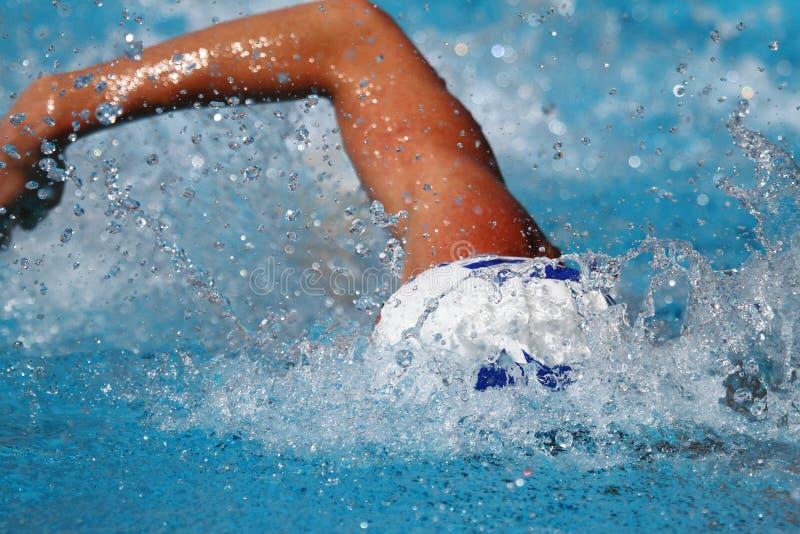 Concorrenza di nuoto: Giochi 2010 di estate di Alpe Adria immagini stock libere da diritti
