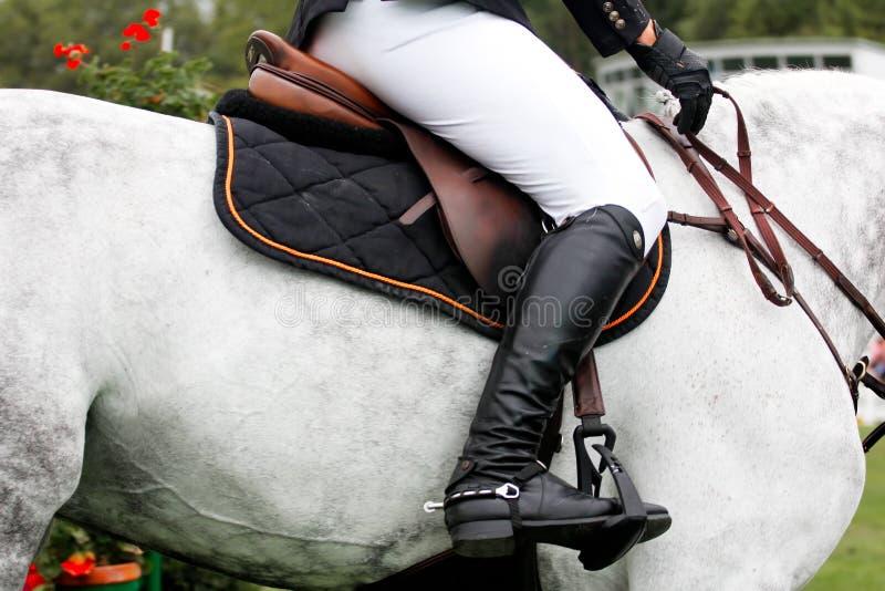 Concorrenza di salto del cavallo immagini stock