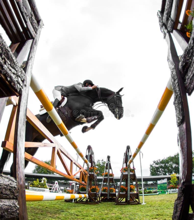 Concorrenza di salto del cavallo immagine stock libera da diritti