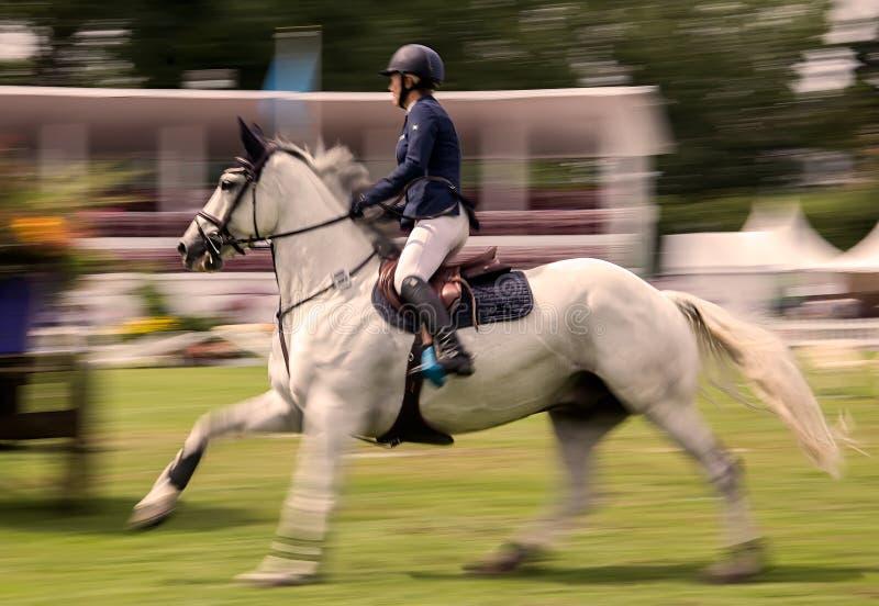 Concorrenza di salto del cavallo fotografia stock libera da diritti