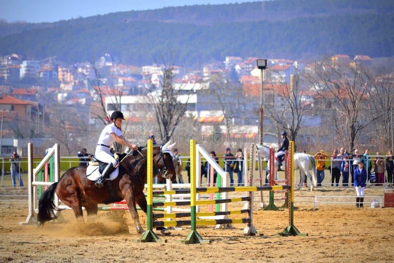 Concorrenza di salto di equitazione rifiutata cavallo fotografia stock